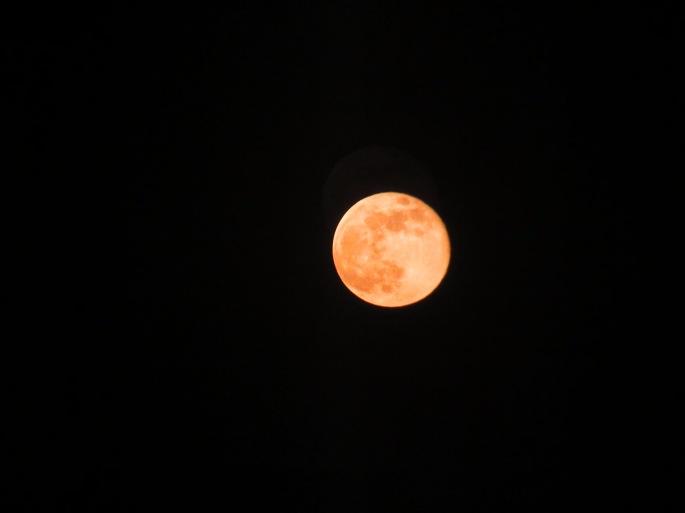 pink moon april 2020